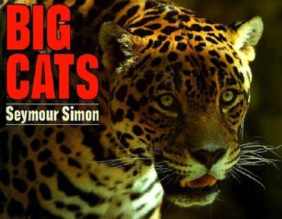 Big Cats By Simon, Seymour
